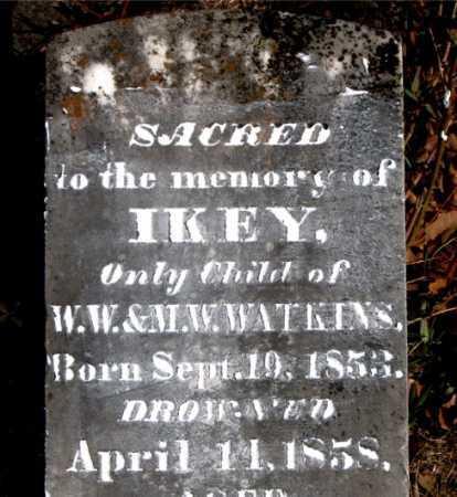 WATKINS, IKEY - Carroll County, Arkansas | IKEY WATKINS - Arkansas Gravestone Photos