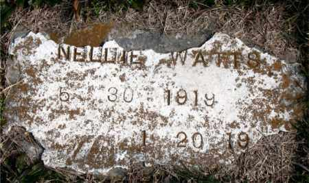 WATTS, NELLIE - Carroll County, Arkansas | NELLIE WATTS - Arkansas Gravestone Photos