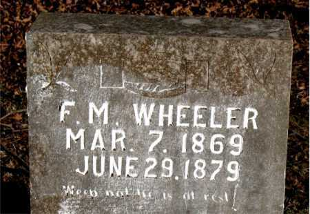 WHEELER, F. M. - Carroll County, Arkansas | F. M. WHEELER - Arkansas Gravestone Photos