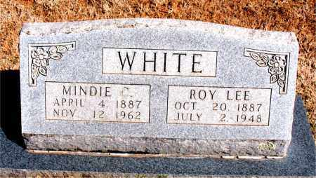 WHITE, MINDIE C. - Carroll County, Arkansas | MINDIE C. WHITE - Arkansas Gravestone Photos