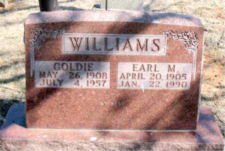 WILLIAMS, EARL M. - Carroll County, Arkansas | EARL M. WILLIAMS - Arkansas Gravestone Photos