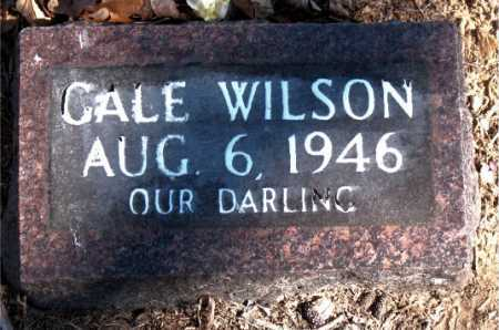 WILSON, CALE - Carroll County, Arkansas | CALE WILSON - Arkansas Gravestone Photos