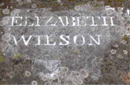 WILSON, ELIZABETH - Carroll County, Arkansas | ELIZABETH WILSON - Arkansas Gravestone Photos