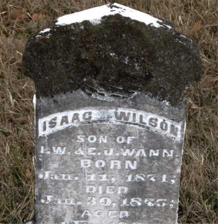 WILSON, ISAAC - Carroll County, Arkansas | ISAAC WILSON - Arkansas Gravestone Photos