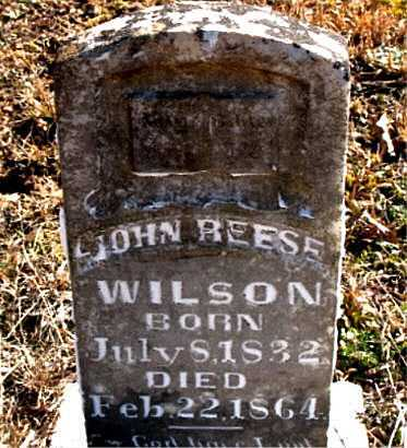 WILSON, JOHN  REESE - Carroll County, Arkansas | JOHN  REESE WILSON - Arkansas Gravestone Photos