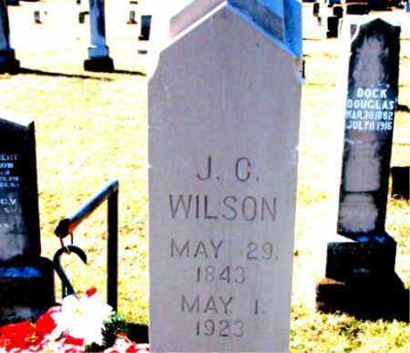 WILSON, J. C. - Carroll County, Arkansas | J. C. WILSON - Arkansas Gravestone Photos