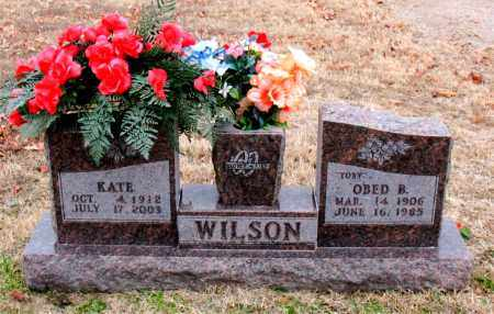 WILSON, KATE - Carroll County, Arkansas | KATE WILSON - Arkansas Gravestone Photos