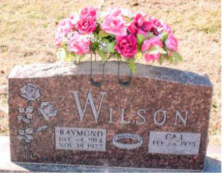 WILSON, RAYMOND - Carroll County, Arkansas | RAYMOND WILSON - Arkansas Gravestone Photos