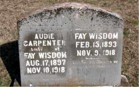 WISDOM, AUDIE - Carroll County, Arkansas | AUDIE WISDOM - Arkansas Gravestone Photos