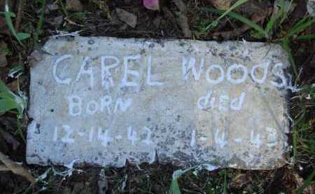 WOODS, CAREL - Carroll County, Arkansas | CAREL WOODS - Arkansas Gravestone Photos