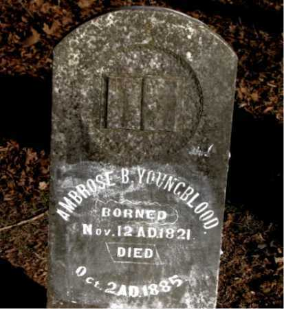 YOUNGBLOOD, AMBROSE B. - Carroll County, Arkansas | AMBROSE B. YOUNGBLOOD - Arkansas Gravestone Photos