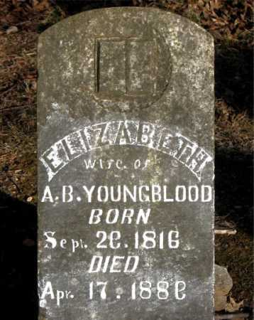 YOUNGBLOOD, ELIZABETH - Carroll County, Arkansas | ELIZABETH YOUNGBLOOD - Arkansas Gravestone Photos