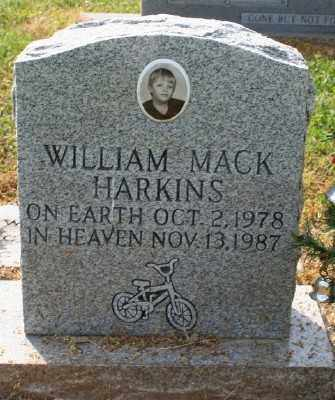 HARKINS, WILLIAM MACK - Chicot County, Arkansas | WILLIAM MACK HARKINS - Arkansas Gravestone Photos