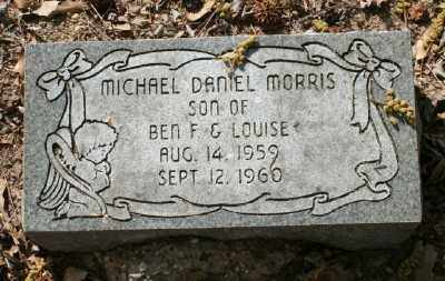 MORRIS, MICHAEL DANIEL - Chicot County, Arkansas | MICHAEL DANIEL MORRIS - Arkansas Gravestone Photos