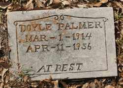 PALMER, DOYLE - Chicot County, Arkansas | DOYLE PALMER - Arkansas Gravestone Photos