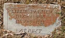 PALMER, LIZZIE - Chicot County, Arkansas | LIZZIE PALMER - Arkansas Gravestone Photos