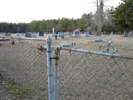 *EASLEY CEMETERY, OVERVIEW - Clark County, Arkansas | OVERVIEW *EASLEY CEMETERY - Arkansas Gravestone Photos