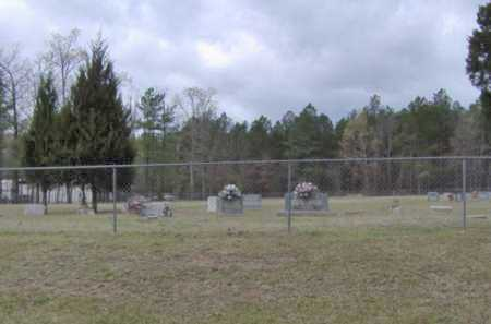 *OVERVIEW,  - Clark County, Arkansas |  *OVERVIEW - Arkansas Gravestone Photos