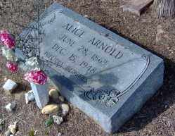 ARNOLD, ALICE - Clark County, Arkansas | ALICE ARNOLD - Arkansas Gravestone Photos