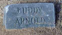 ARNOLD, BUDDY - Clark County, Arkansas | BUDDY ARNOLD - Arkansas Gravestone Photos