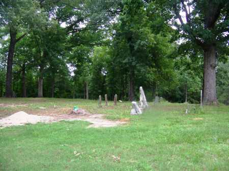 *BOZEMAN CEMETERY, OVERVIEW - Clark County, Arkansas | OVERVIEW *BOZEMAN CEMETERY - Arkansas Gravestone Photos