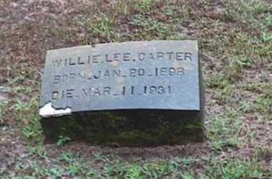CARTER, WILLIE LEE - Clark County, Arkansas | WILLIE LEE CARTER - Arkansas Gravestone Photos