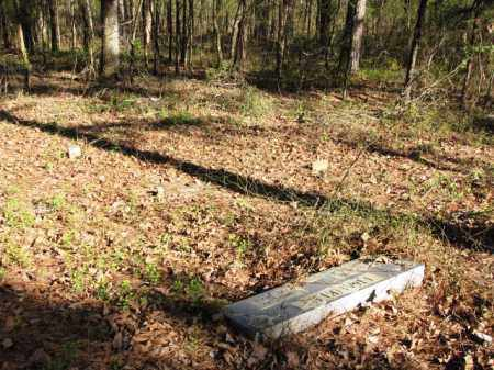 *FRANKLIN CEMETERY, OVERVIEW - Clark County, Arkansas | OVERVIEW *FRANKLIN CEMETERY - Arkansas Gravestone Photos