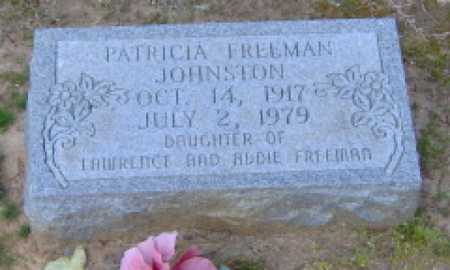 FREEMAN JOHNSTON, PATRICIA - Clark County, Arkansas | PATRICIA FREEMAN JOHNSTON - Arkansas Gravestone Photos