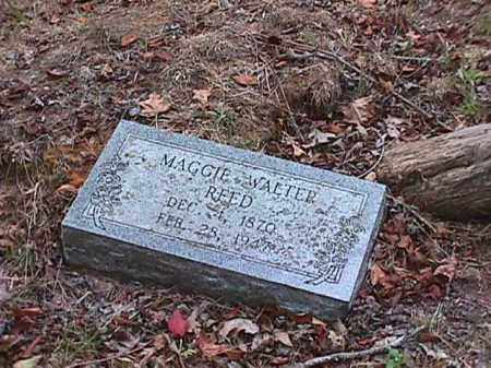WALTER REED, MAGGIE - Clark County, Arkansas | MAGGIE WALTER REED - Arkansas Gravestone Photos