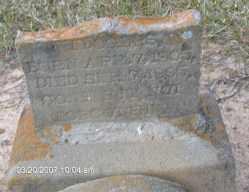ROGERS, ANNIE M. - Clark County, Arkansas | ANNIE M. ROGERS - Arkansas Gravestone Photos