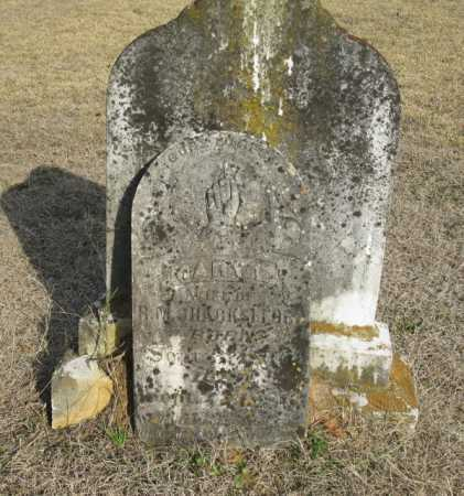 SHACKLEFORD, MARY E. - Clark County, Arkansas | MARY E. SHACKLEFORD - Arkansas Gravestone Photos