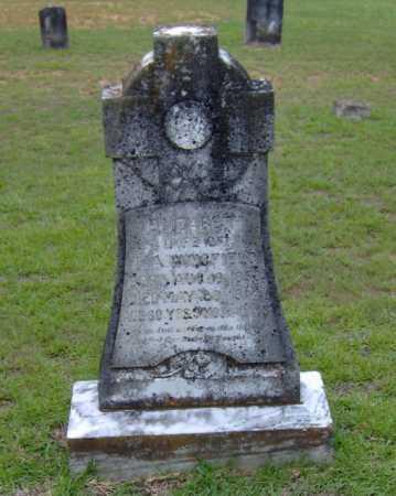 "WINGFIELD, ELIZABETH ""LIZZIE"" - Clark County, Arkansas | ELIZABETH ""LIZZIE"" WINGFIELD - Arkansas Gravestone Photos"