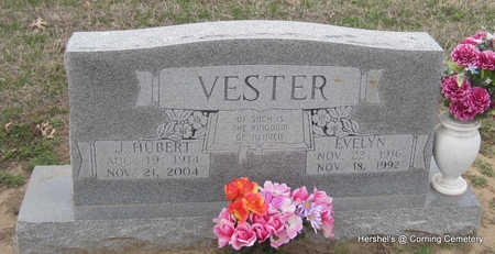 VESTER, JAMES HUBERT - Clay County, Arkansas | JAMES HUBERT VESTER - Arkansas Gravestone Photos