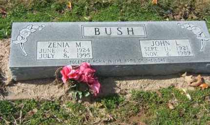 BUSH, JOHN - Clay County, Arkansas | JOHN BUSH - Arkansas Gravestone Photos