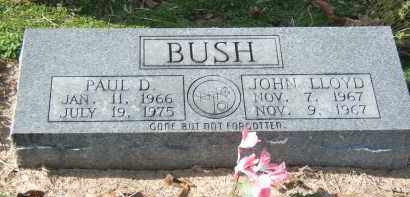 BUSH, PAUL D. - Clay County, Arkansas | PAUL D. BUSH - Arkansas Gravestone Photos