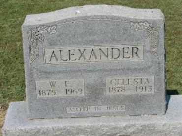 ALEXANDER, W.F. - Clay County, Arkansas | W.F. ALEXANDER - Arkansas Gravestone Photos