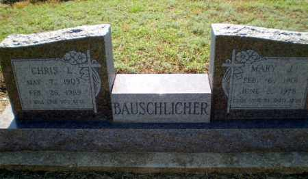 BAUSCHLICHER, CHRIS L - Clay County, Arkansas | CHRIS L BAUSCHLICHER - Arkansas Gravestone Photos
