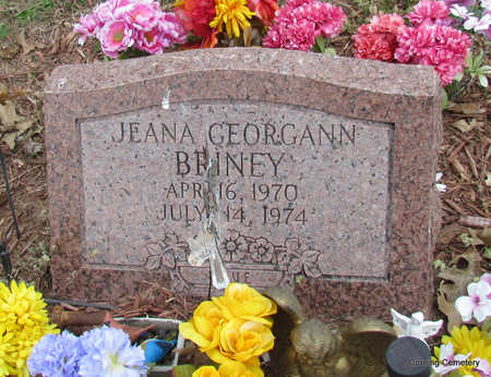 BRINEY, JEANA GEORGANN - Clay County, Arkansas | JEANA GEORGANN BRINEY - Arkansas Gravestone Photos