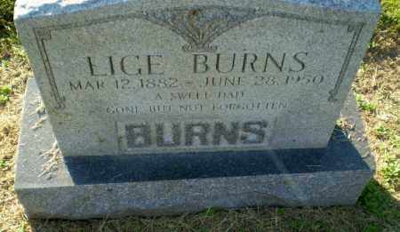 BURNS, LIGE - Clay County, Arkansas | LIGE BURNS - Arkansas Gravestone Photos
