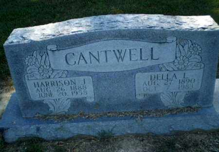 CANTWELL, DELLA L - Clay County, Arkansas | DELLA L CANTWELL - Arkansas Gravestone Photos