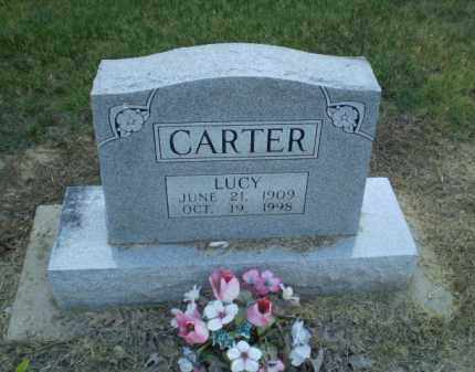 CARTER, LUCY - Clay County, Arkansas | LUCY CARTER - Arkansas Gravestone Photos