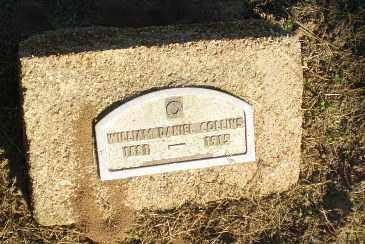 COLLINS, WILLIAM DANIEL - Clay County, Arkansas | WILLIAM DANIEL COLLINS - Arkansas Gravestone Photos