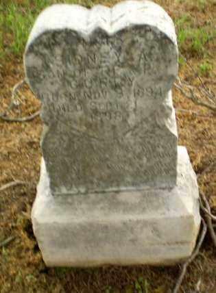 CURRY, SIDNEY - Clay County, Arkansas   SIDNEY CURRY - Arkansas Gravestone Photos