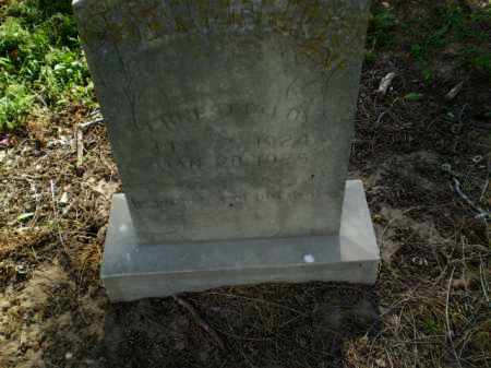 DELOY, ERNEST - Clay County, Arkansas   ERNEST DELOY - Arkansas Gravestone Photos