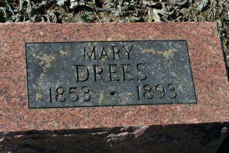 DREES, MARY - Clay County, Arkansas | MARY DREES - Arkansas Gravestone Photos