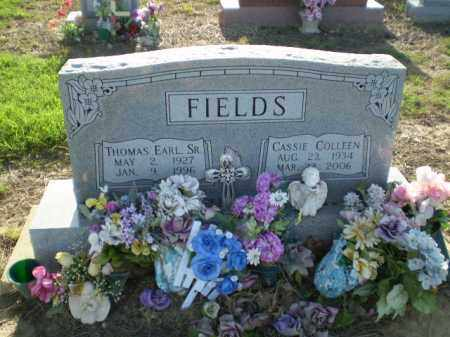 FIELDS, CASSIE - Clay County, Arkansas | CASSIE FIELDS - Arkansas Gravestone Photos