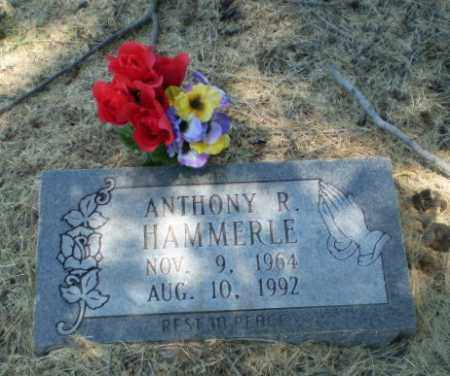 HAMMERLE, ANTHONY R - Clay County, Arkansas | ANTHONY R HAMMERLE - Arkansas Gravestone Photos