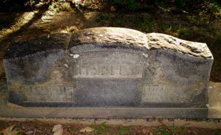 HARLEY, RICHARD J - Clay County, Arkansas | RICHARD J HARLEY - Arkansas Gravestone Photos