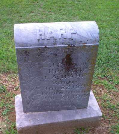 HARP, J.C. - Clay County, Arkansas | J.C. HARP - Arkansas Gravestone Photos