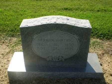 HARTWIG, HERMAN - Clay County, Arkansas | HERMAN HARTWIG - Arkansas Gravestone Photos